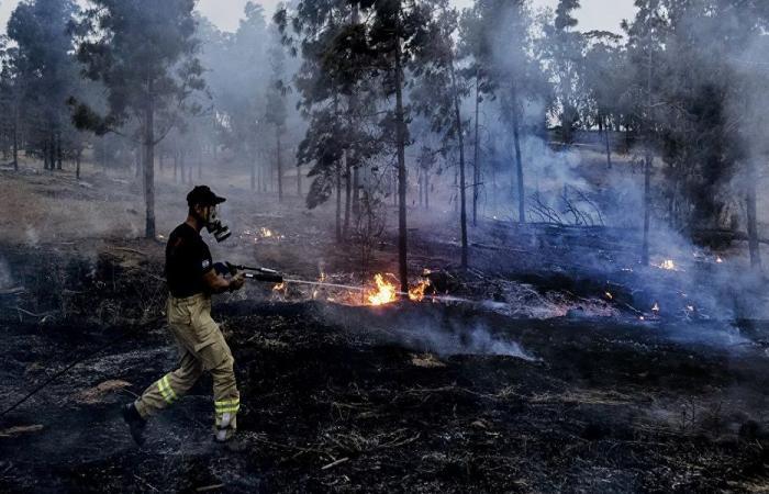 حريق هائل في سهول القمح بالبقاع الغربي