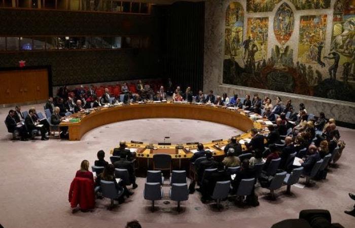 فوز الإمارات و4دول أخرى بمقاعد في مجلس الأمن