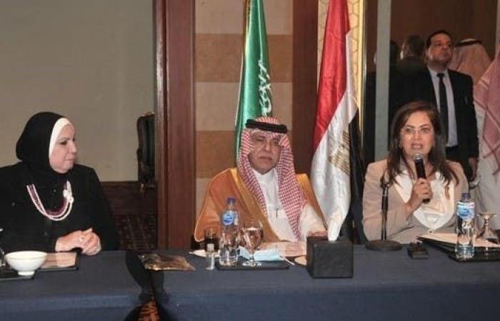 مجتمع الأعمال السعودي المصري يستعرض فرص الاستثمار