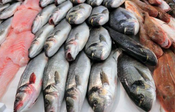 ما فائدة تناول السمك 5 مرات في الأسبوع؟