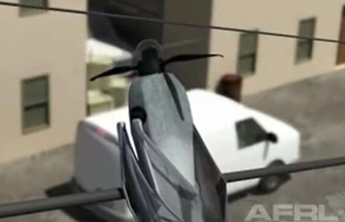 جديد الطائرات المُسيرة.. أجنحة مثل الطيور والحشرات!