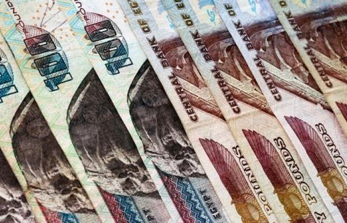 السيسي يصدر قراراً بزيادة معاشات المصريين