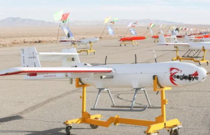 أكسيوس: إسرائيل اقترحت على واشنطن فرض منطقة حظر لطائرات إيران المسيرة