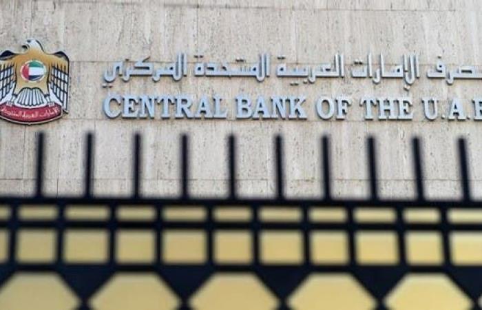 المركزي الإماراتي يخطط لإصدار عملة رقمية