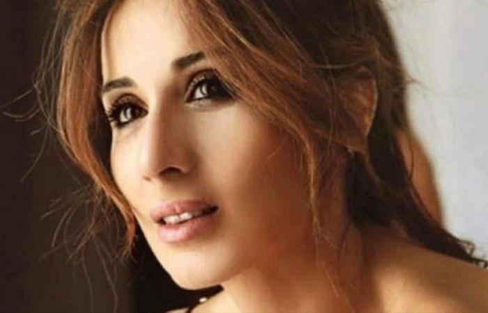 كارين رزق الله: كل من يصوّت ضد رفع الحصانة يكون متورطاً