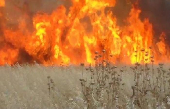 سوريا.. إخماد الحريق الذي امتد من لبنان باتجاه حمص