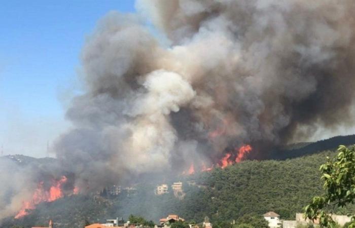 """""""المستقبل"""": لكشف سبب عدم تدخل الطيران لإطفاء حريق مشمش"""