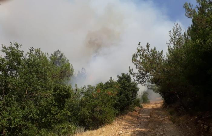 إهماد حريق في أطراف بلدة البابلية