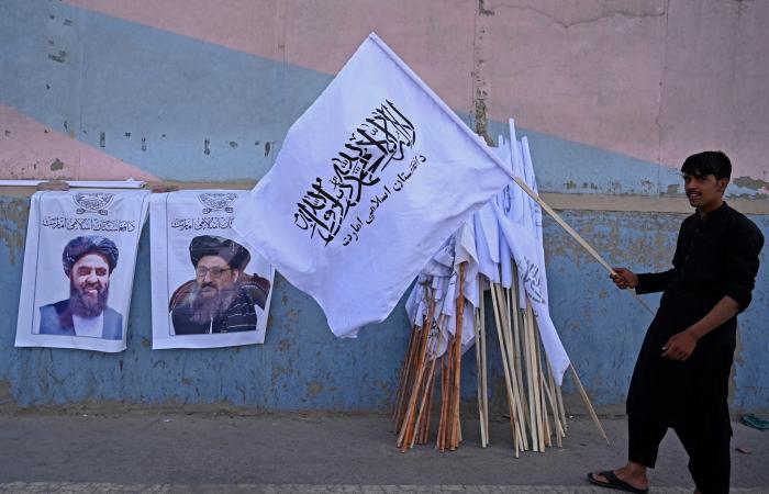 نيويورك تايمز: حملة انتقام سرية تشنها طالبان ضد مسؤولين
