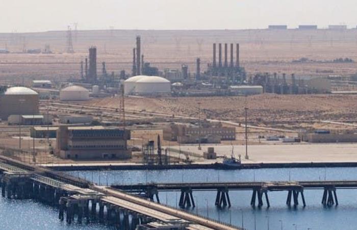 وزير للعربية: استقرار ليبيا سيوفر فرصا واعدة للمستثمر المحلي والأجنبي