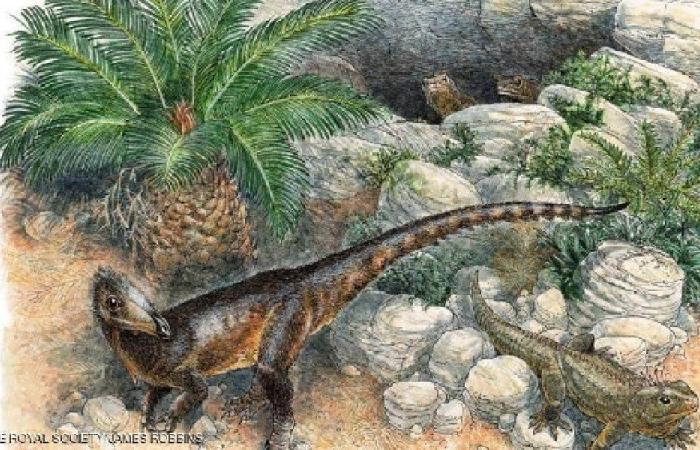 """علماء بريطانيون يكتشفون """"الديناصور الغريب"""""""