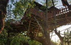بالصور ـ أكواخ خشبية على اشجار زاخو تذهل السائحين!